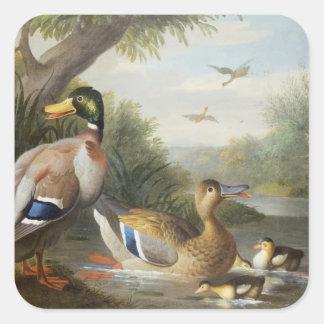 Ducks in a River Landscape Square Sticker