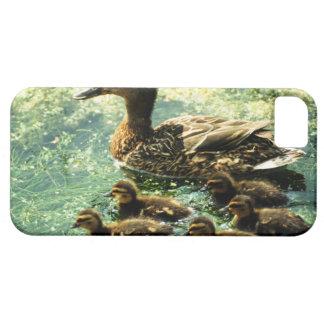 ducks iPhone 5 case
