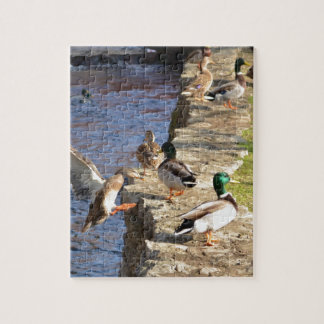Ducks Jigsaw Puzzle