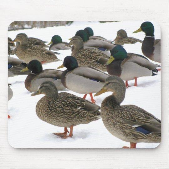 Ducks! Mousepad