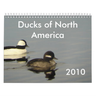Ducks of North America 2010 Calendar