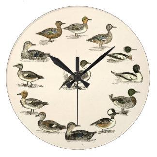 Ducks of North America Illustrations Large Clock