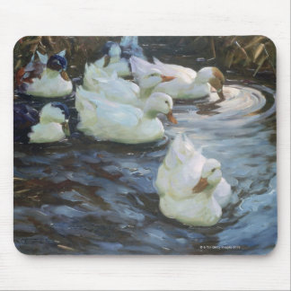 Ducks on a Pond Mouse Pad
