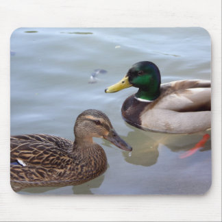 Ducks on a Pond Mousepad
