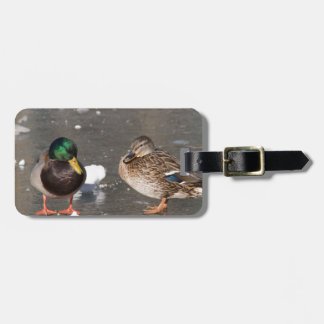 """""""ducks on black ice"""" luggage tag"""