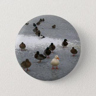 Ducks on Ice 6 Cm Round Badge