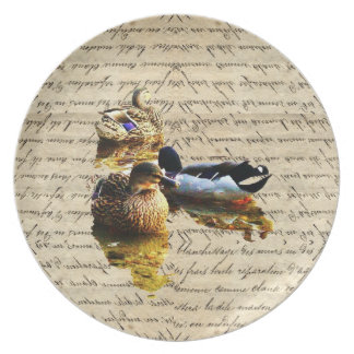 Ducks on vintage paper party plates