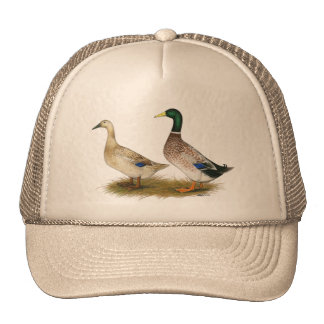 Ducks:  Silver Welsh Harlequin Cap