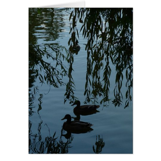 Ducks Under the Willow Card