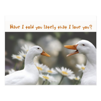 DucktoDuckLove you Postcard