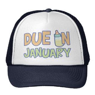 Due In January Cap