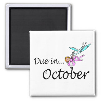 Due In October (Baby/Stork) Square Magnet