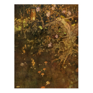 Dulac s The Tempest Postcard