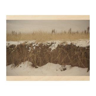 Duluth Minnesota Park Point Sand Dunes Minnesota Wood Prints
