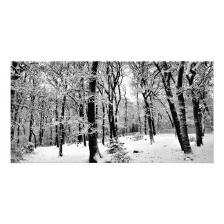 Dulwich Woods, Snow day Card