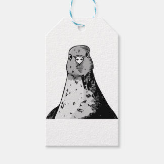 Dumb Birds Gift Tags