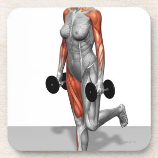 Dumbbell Single Leg Deadlift 2 Coaster
