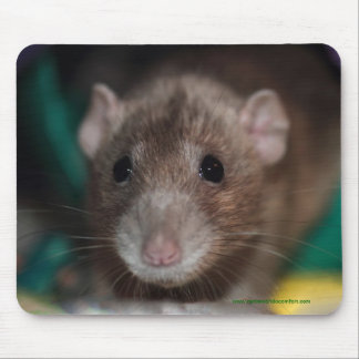 Dumbo Fancy Rat Mousepad