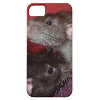 Dumbo rat brothers barely there iPhone 5 case