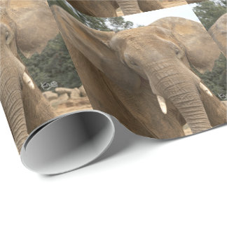 Dumbo Wrapping Paper