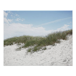 Dune at a beach in scandinavia. poster