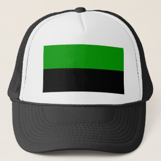 Dune - Flag House Atreides Trucker Hat