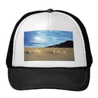 Dunes And Twigs Mesh Hat