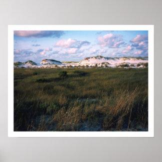 Dunes ,Gulf Isle National Sea Shore Posters