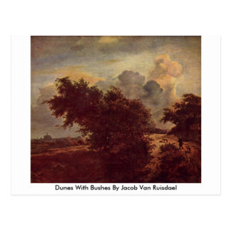Dunes With Bushes By Jacob Van Ruisdael Post Card