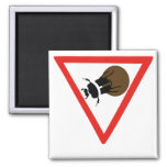 Dung Beetle Crossing, Trafic Sign, South Africa Square Magnet