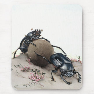Dung Bettle Mouse Pad
