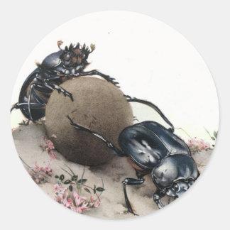 Dung Bettle Round Sticker