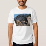 Durango and Silverton Railroad, No. 481, Bear Cree T Shirt