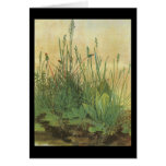 Durer Large Piece Of Turf Greeting Card