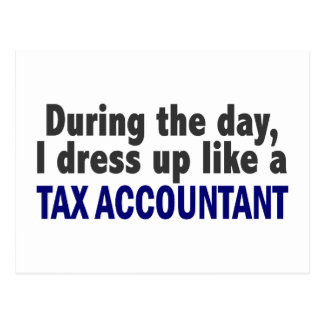 During The Day I Dress Up Like A Tax Accountant Postcard