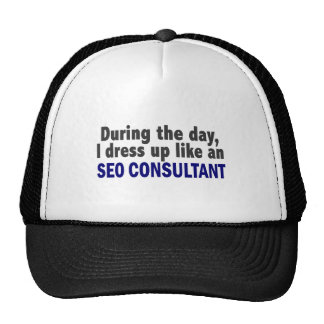 During The Day I Dress Up Like An SEO Consultant Cap