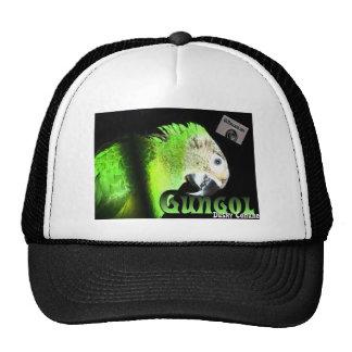 Dusky Conure Gear Hat