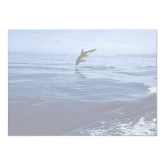 Dusky dolphins, side view, nose dive custom invite