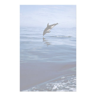 Dusky dolphins, side view, nose dive stationery