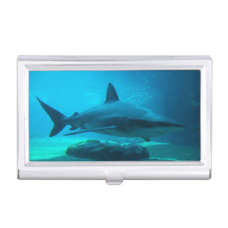 Dusky Shark (Carcharhinus Obscurus), Ushaka Business Card Holder