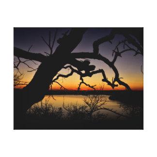 dusky treescape canvas print