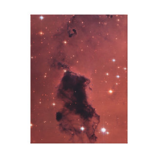 Dust Clouds In The Milky Way Canvas Prints