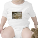 Dust Storm In The Taklimakan Desert Picture Earth Tee Shirt