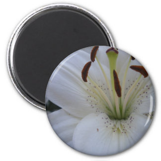 Dusted White Lily 6 Cm Round Magnet