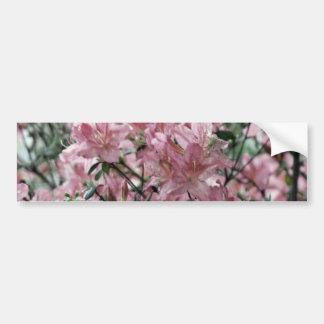 Dusty pink azaleas and meaning bumper sticker
