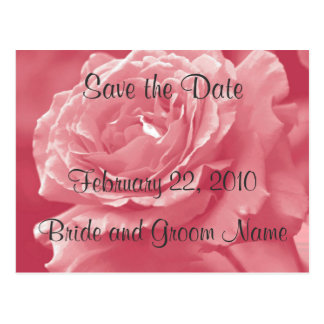 Dusty Pink Rose Save the Date Postcard
