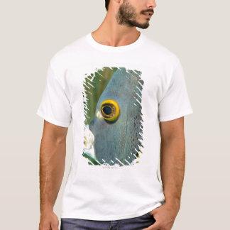 Dutch Antilles, Bonaire, Underwater close-up T-Shirt