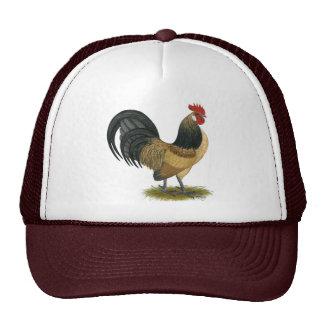 Dutch Bantam:  Blue Quail Rooster Hat