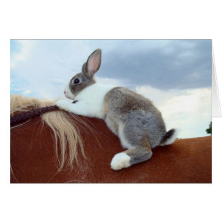 Dutch bunny rabbit riding horse notecard