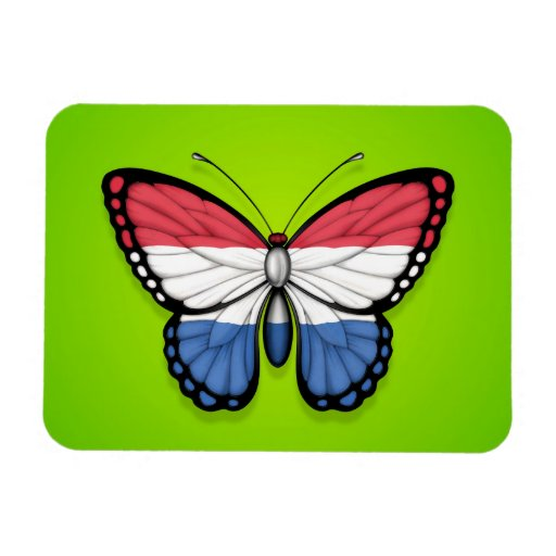 Dutch Butterfly Flag on Green Magnets